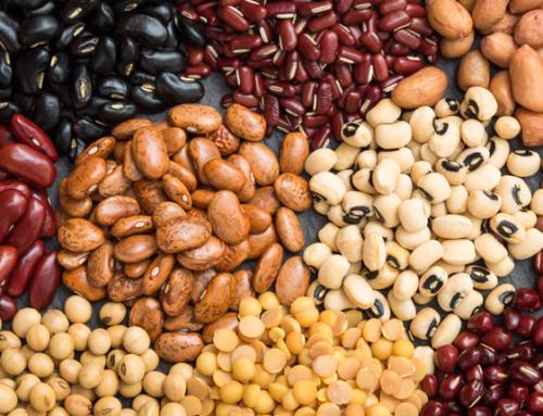 La importancia de las legumbres en el desarrollo infantil