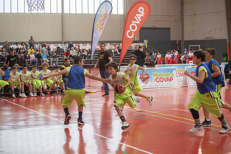 Copa COVAP deporte baloncesto